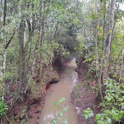 Serafina Corrêa - Kuhn Gestão Ambiental (6)