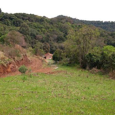 Serafina Corrêa - Kuhn Gestão Ambiental (2)